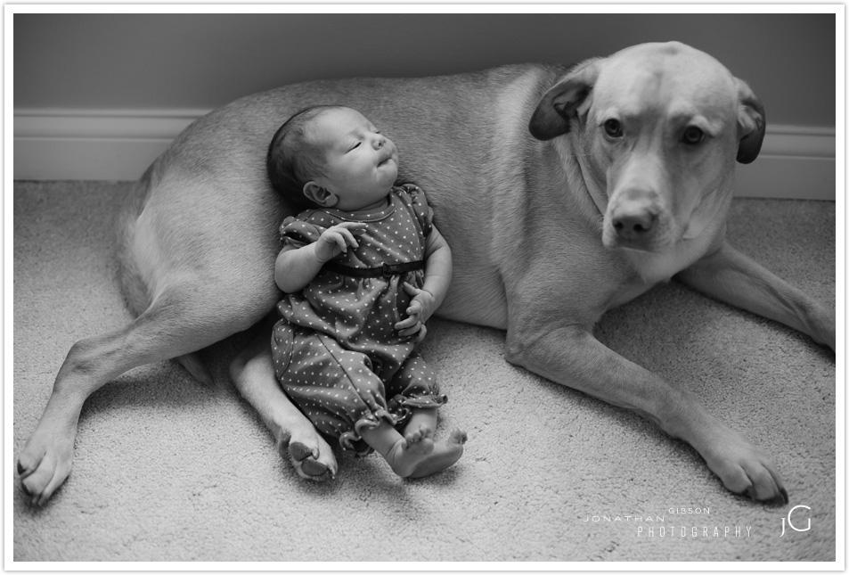 cincinnati-baby-photographer013