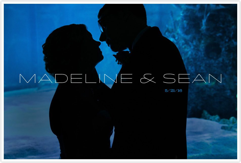 MADELINE & SEAN WEDDING